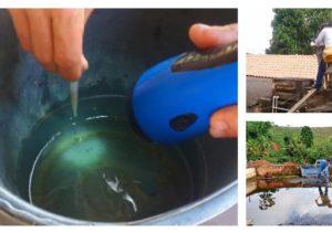 Do dia 02 de janeiro quando iniciou o primeiro ciclo de combate ao mosquito até o início desta semana, os agentes epidemiológicos encontraram só no bairro Nova Munique 61 focos com larvas do mosquito